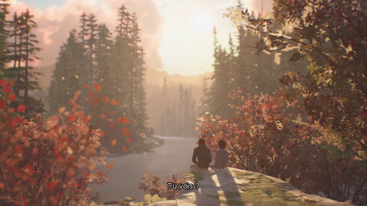 Paysage visible dans le premier épisode de Life Is Strange 2, observé par Sean et Daniel.